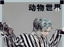 薛之谦 - 动物世界【192K】伴奏