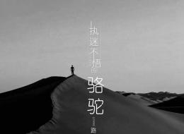 路勇 - 执迷不悟的骆驼【320K】伴奏.mp3