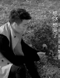 马智宇 - 想你想哭了【WAV无损音质原版立体声伴奏】.wav