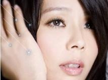 孙淑媚 - 【流星雨】2012年4月7日发行